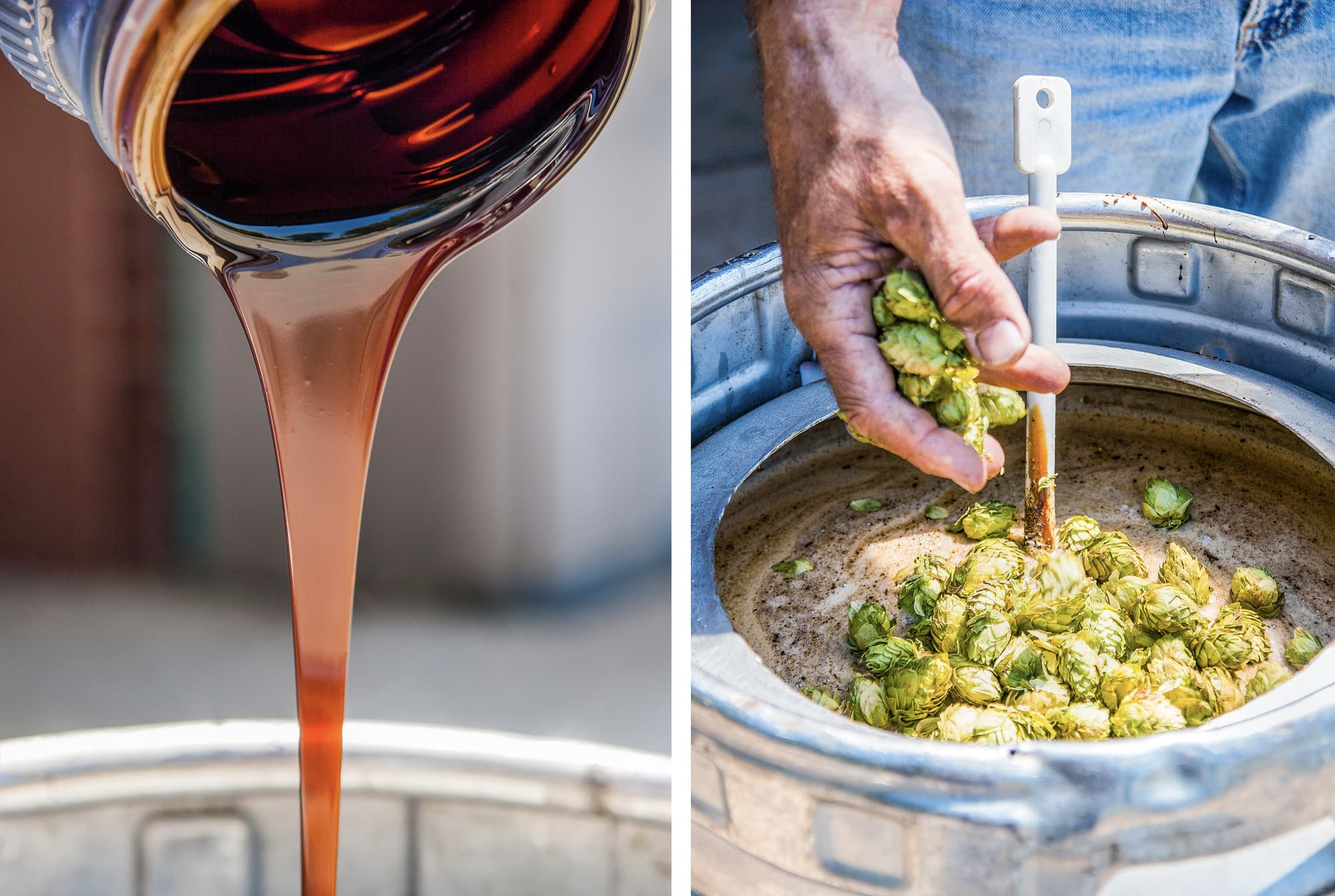 beer making process with mans hand stirring hops